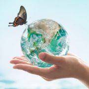 Verdensdag for vand